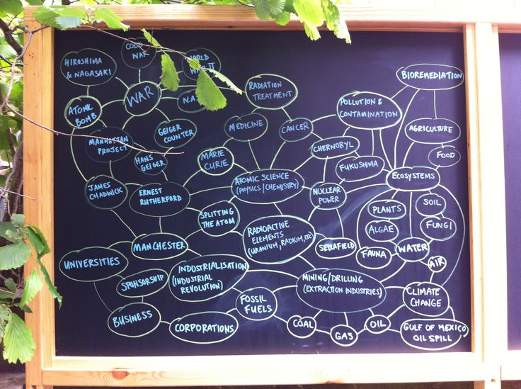 Ecology: Mind Map (blackboard on Rutherford