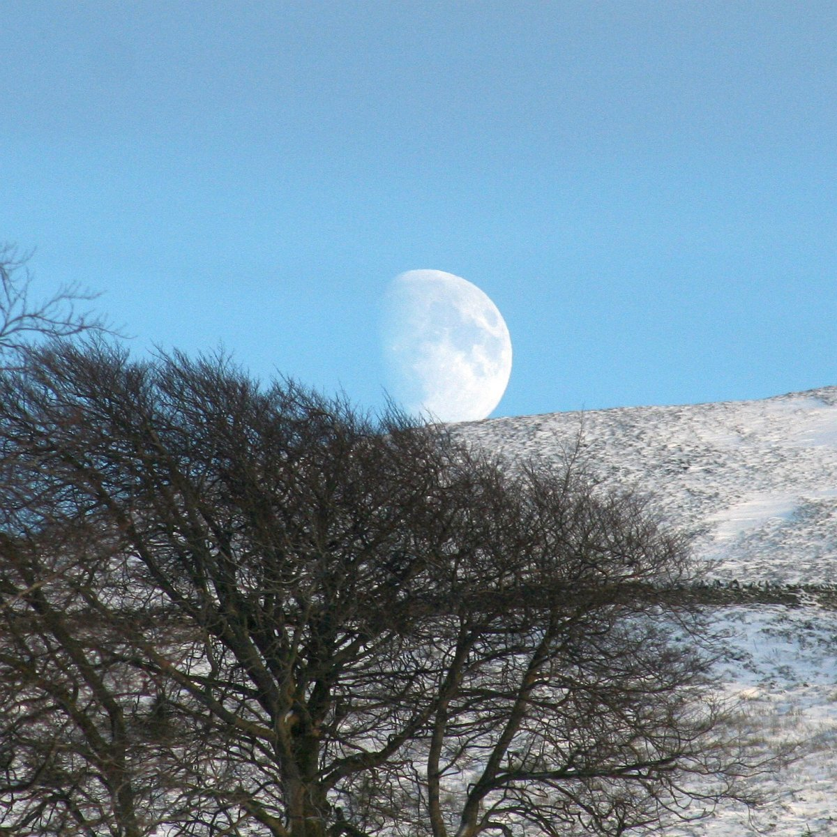 Rising Snowmoon; photo by Jules Cadie