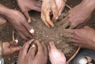 Hands-In-Soil-for-ARTCOP21.jpg
